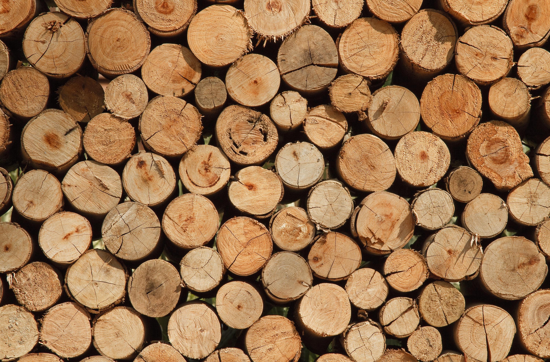 l 39 importance du bois cet hiver cheminee. Black Bedroom Furniture Sets. Home Design Ideas
